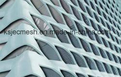 Расширена металлической сетки и мастерской для архитектурных решений