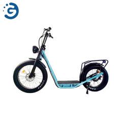脂肪のTuの立場2620の新しい地位はスクーター様式の電気バイクEECにタイヤをつける