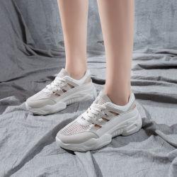 Niza bajo precio de la mujer zapatillas de tacón alto, fabricado en China Mayorista de deporte calzado casual, el nuevo estilo Sneakers zapatos de tacón grueso