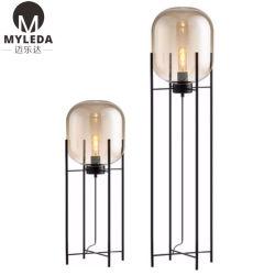 Для использования внутри помещений в современном стиле отель проект охраны окружающей среды стекло постоянного напольная лампа