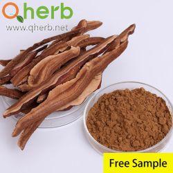 무료 샘플 Reishi Mushroom Ganoderma Extract Beta Glucan 증진을 위한 Top Quantity(상위 수량)의 면역 체계