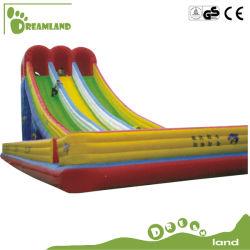 Parco divertimenti Bouncy Castle con giocattoli gonfiabili a scivolo all'aperto per Bambini Dlib012