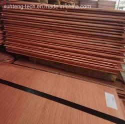 Китайские заводы Оптовая продажа Cathode Copper