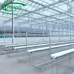Fabrikpreislandwirtschaftlicher UVschutzplastik 200-Mikron-Plastikgewächshausfilm für Garten