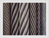 Precio razonable de la Ss Cable