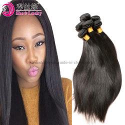 2018新式の普及した女性の毛の拡張マレーシアのRemyの直毛の織り方の自然な人間の毛髪