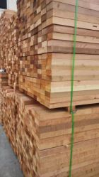 De première main Ad en bois de cèdre rouge sec
