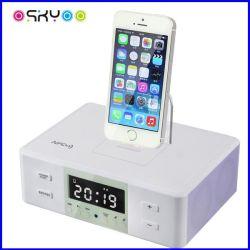 iPhone Loudspeaker BoxのためのNfc Bluetooth Wireless Connect