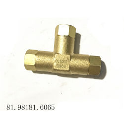 pièces de rechange Shacman Original T-81.98181.6065 mixte