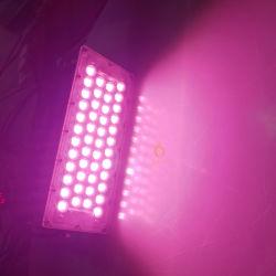 100 W Pink/Rot/Grün/Blau Farbe LED-Arbeitsscheinwerfer für Außenparkbeleuchtung, Marineblau, Landschaftsdekoration