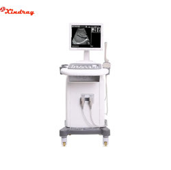 Fabrieksprijs Diagnose apparatuur volledig digitaal Trolley Mobile Medical Hospital Scanner Clinic zwart-wit ultrasoundmachine