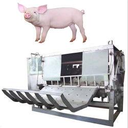 도살장 또는 돼지 도살 장비를 위한 도살 기계
