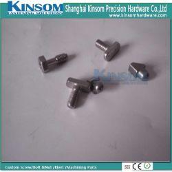 Bullone capo speciale dell'acciaio inossidabile T dei fermi del metallo di Speical