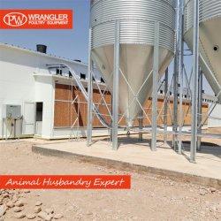 A agricultura moderna completa o aterramento do Projeto de equipamento de aves de capoeira de reprodução