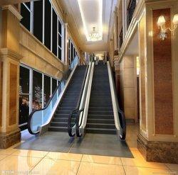 Étape Vvvf 1000mm largeur intérieure commerciale Escalator, Escalator de plein air de haute élévation
