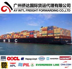 Fast fret FCL Mer/Ocean Freight de Qingdao/Shanghai/Shenzhen, la Chine à Lattaquié, la Syrie