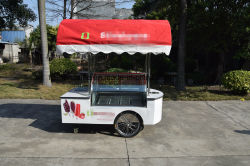 Sri Lanka Street Mobile Vending panier alimentaire de la crème glacée panier pour la vente