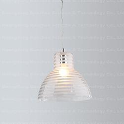 Conception unique round commercial pandant lampe intérieure