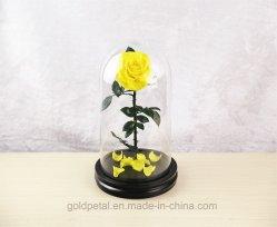 Venta caliente 3-4 años de duración conserva rosa amarilla flores en la cúpula de vidrio para Christams regalos