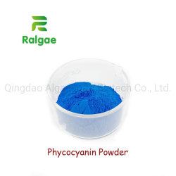 Pigmento de color natural Extracto de la spirulina la ficocianina complemento nutricional alimentos aditivos ingrediente Color
