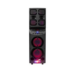 2 Tweeters를 가진 1000W Double 10 Inch Home Theatre Portable System Active DJ Speaker Box