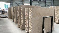 Germania Jura Beige Limestone pietra fossile naturale lastre di marmo pavimenti/pareti/piastrelle