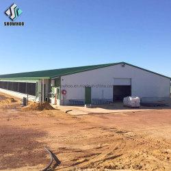 Long Hangar agricole Conception Span préfabriqués Structure en acier fabriqué maison de la volaille
