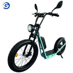 성인을%s 48V 리튬 건전지를 가진 공장 전기 자전거