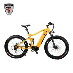 48V/17.5ah 분리형 배터리 E-Bike 1000W 미드 드라이브 모터 마운틴 E-사이클