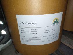 Base della L-Carnitina del rifornimento della fabbrica con il migliore prezzo