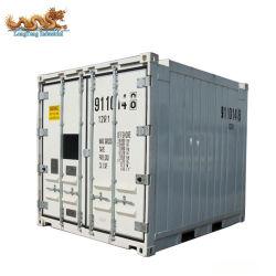 Contenitore in mare aperto del guardiamarina dell'Units standard 10FT di Dnv 2.7-1 termo del re Refrigerated
