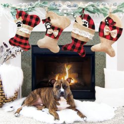 I giocattoli di natale per l'animale domestico di natale del regalo dei capretti colpisce con forza i regali del calzino di natale delle decorazioni