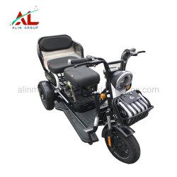 [أل-إكسك] يطوي كهربائيّة درّاجة ثلاثية غلّة كرم درّاجة ثلاثية كهربائيّة كهربائيّة درّاجة ثلاثية محرّك [فورسل] في أمريكا جنوبيّة