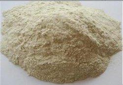 القمح وجبة غلوتن البروتين 70 ٪ على الأقل