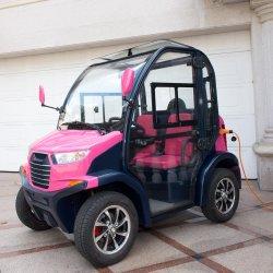 Automobile 2 Seater della carrozza ferroviaria mini