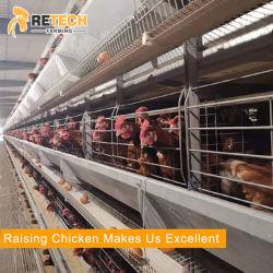 سعر جيد دواجن التلقائي مزرعة المعدات البطارية طبقة الدجاج Cage للبيع