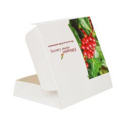 Упаковка для обедов на кардборд-бумаге для кейтеринга/авиабилетов/подарочной коробки/почтового ящика Коробка/коробка для карт