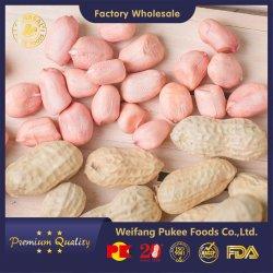 Nuovo prodotto/nocciolina grezza Inshell /fornitore Cina/ tipo Runner