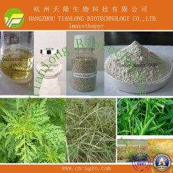 Imazethapyr (97 % TC, 70 % WP, 100SL)-Herbizid