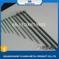 中国の工場5kg磨かれた共通ワイヤー釘