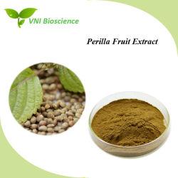 Certifiée ISO 100 % Pure Purple Perilla extrait de plante pour l'Anti-Cancer