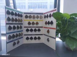 살롱 머리 염색에 사용되는 주문을 받아서 만들어진 상표 고품질 머리 색깔 책 Swatchs