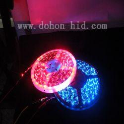 LED 스트립 조명(5050 5m 블루/레드)