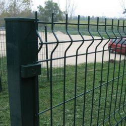Anping Zhuokai 3D Welded Fence Wire Mesh per la recinzione scolastica /pannello recinzione/recinzione