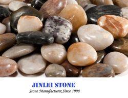 정원 또는 조경 훈장 또는 자갈 모자이크 타일을%s 순수한 노랗거나 백색 또는 까만 혼합 색깔에 의하여 닦는 강 자갈 돌
