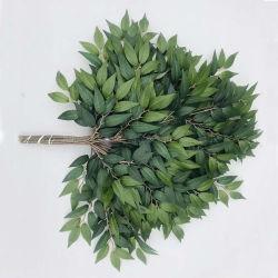 Nuovi fogli artificiali progettati dell'albero di Banyan del Ficus della Francia del tessuto artificiale del foglio per Decoraiton