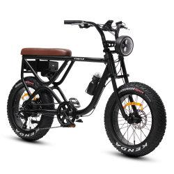 Neues Fahrrad-elektrisches Strand-Schmutz-Schnee-Gebirgsfahrrad des Arrivelled Leistungs-fettes Gummireifen-Motore (MZ-088)