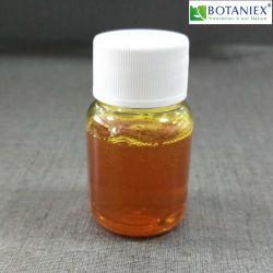 L'eau soluble de l'huile de gingembre sans métaux lourds et des résidus de solvant