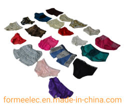 夏の摩耗の短いズボンのレディースレギンスの衣服は使用されるベールのブラ アンダーウェアブラッセレ