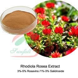 El extracto natural de Rhodiola Rosea el 3% 5% de Rosavin